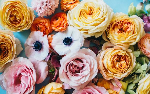 pool flowers
